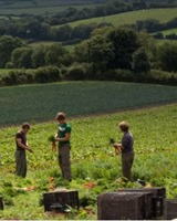 Riverford Organic Farms Franchise | Organic Delivery Business