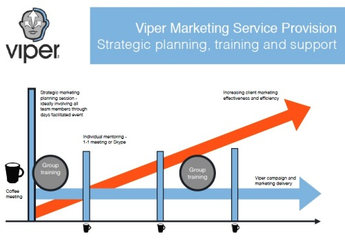 Viper Business | Marketing & Communications Franchise