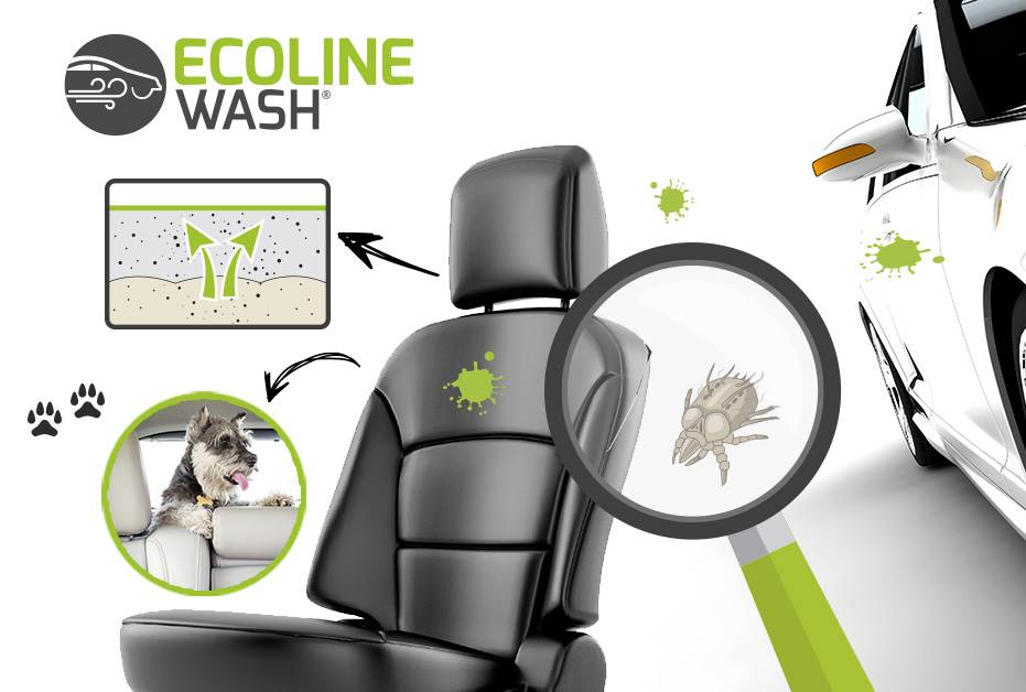 Ecoline Wash Master Franchise | Valeting and Steam Clean Business